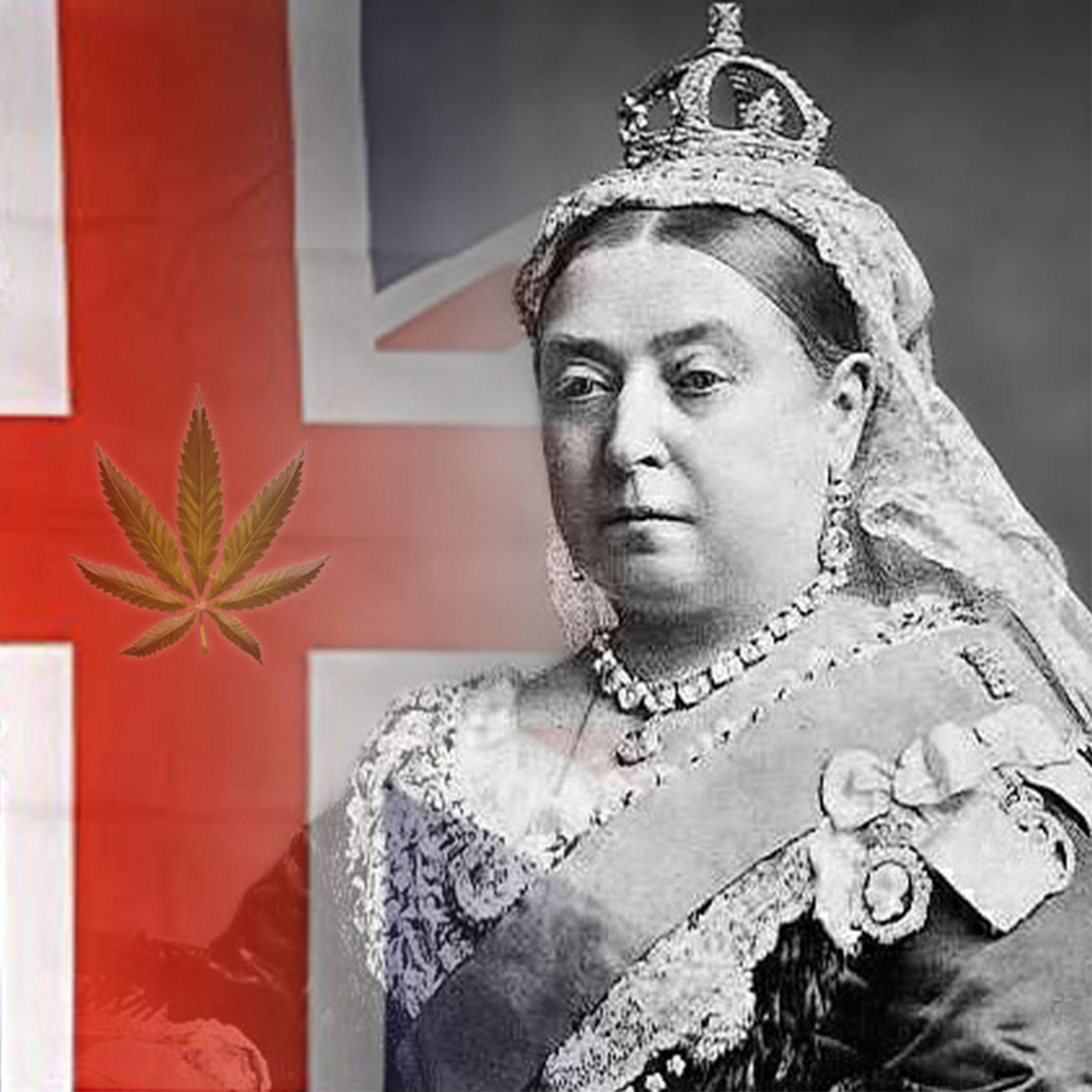 articolo su cannabis e regina vittoria