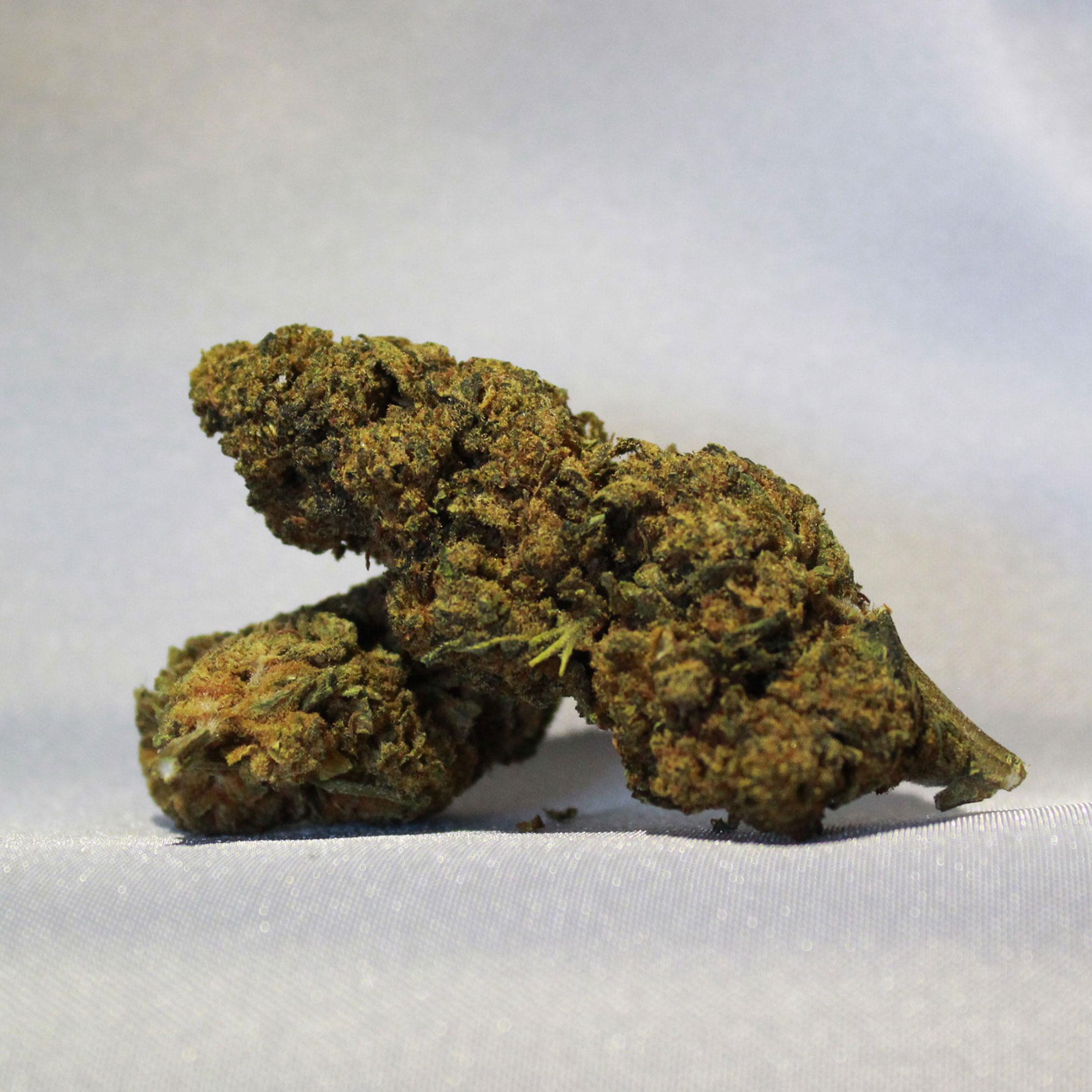 infiorescenza cbd fruit weed
