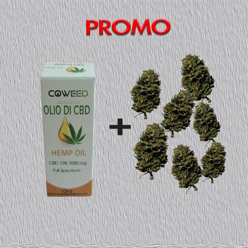 promozione olio di cbd 10% e infiorescenze therapy