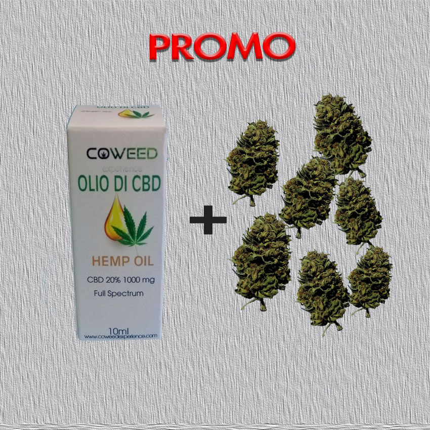 promo olio cbd 20% e infiorescenze therapy